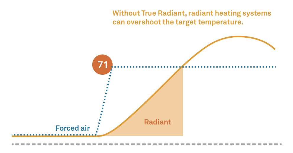 learn more about true radiant rh nest com